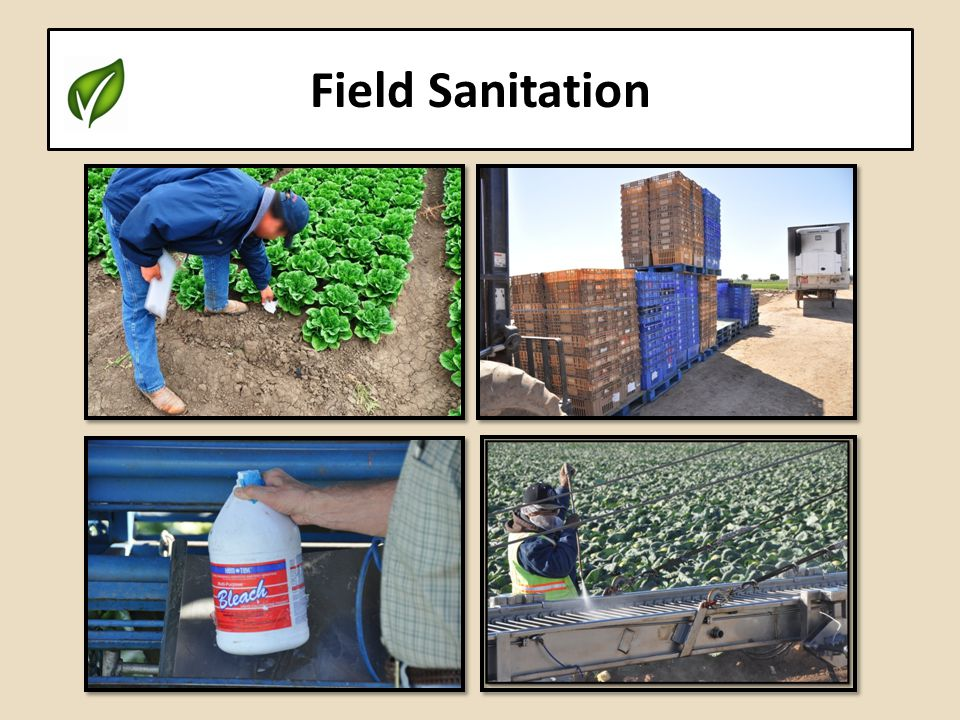 Field Sanitation
