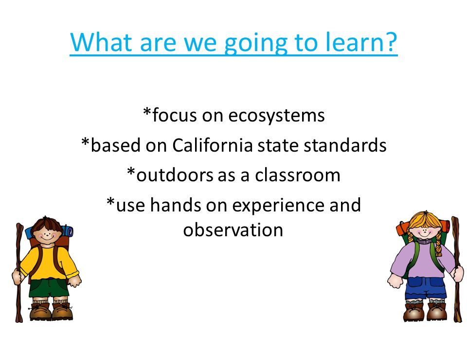 Constant observation and hands on activity leads to amazing chances for learning!