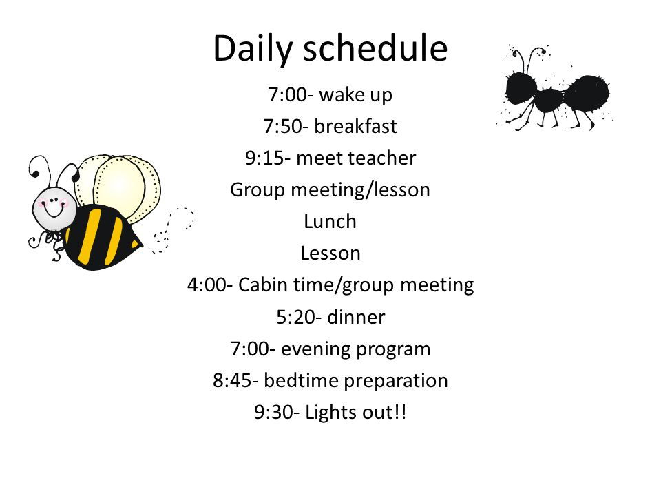 Daily schedule 7:00- wake up 7:50- breakfast 9:15- meet teacher Group meeting/lesson Lunch Lesson 4:00- Cabin time/group meeting 5:20- dinner 7:00- ev