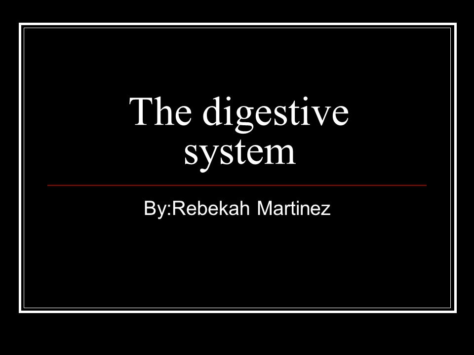 The digestive system By:Rebekah Martinez