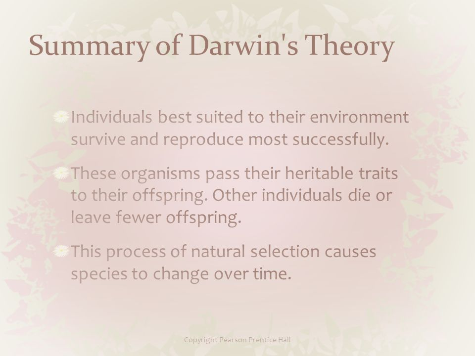 Copyright Pearson Prentice Hall Summary of Darwin s Theory