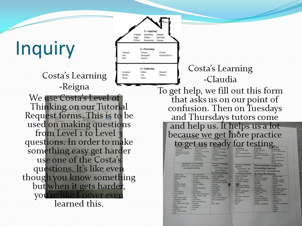 Inquiry Costa's Learning -Reigna We use Costa's Level of Thinking on our Tutorial Request forms.