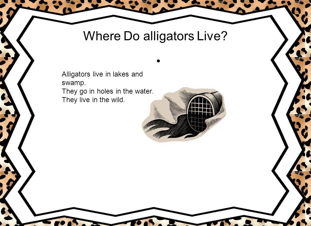 Do Alligators Have Predators.Big cats such as jaguars and leopards.