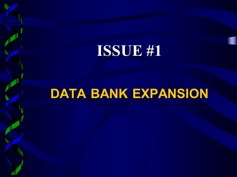 ISSUE #1 DATA BANK EXPANSION