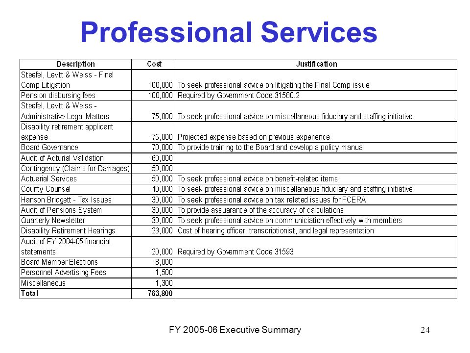 FY 2005-06 Executive Summary24 Professional Services