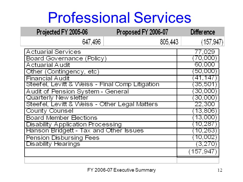 FY 2006-07 Executive Summary12 Professional Services