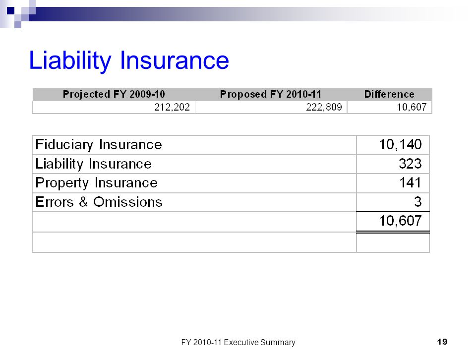 FY 2010-11 Executive Summary19 Liability Insurance