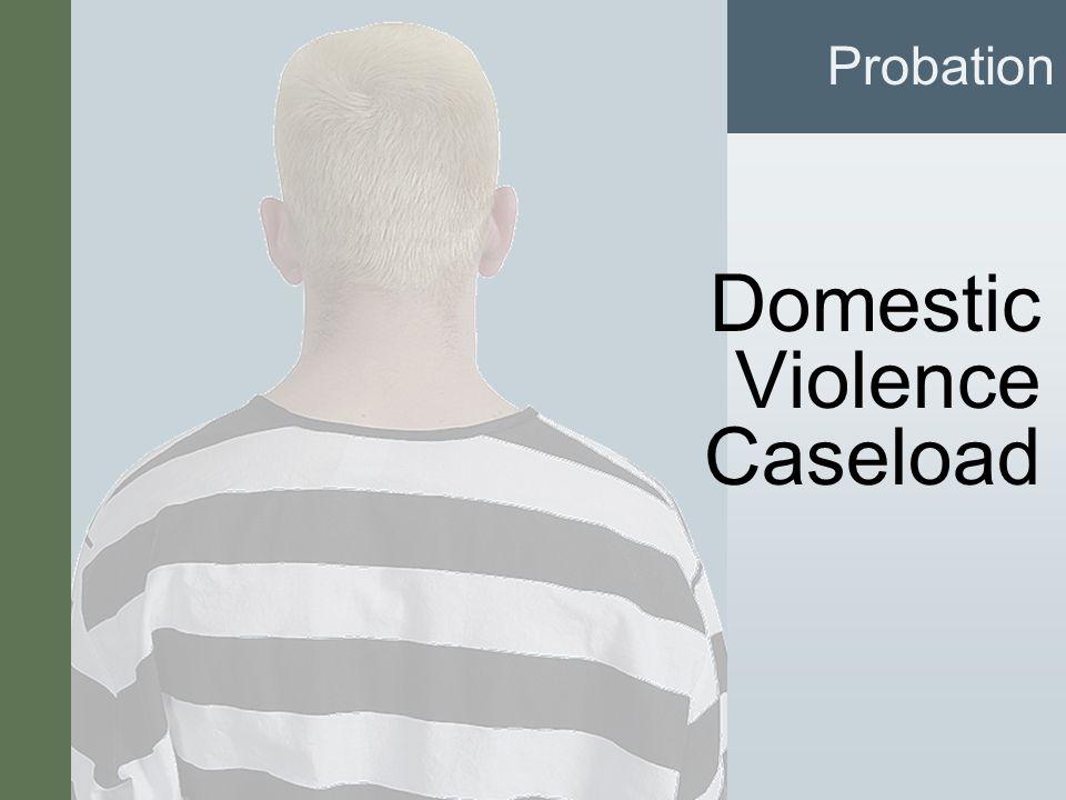 #7 Domestic Violence Caseload Probation