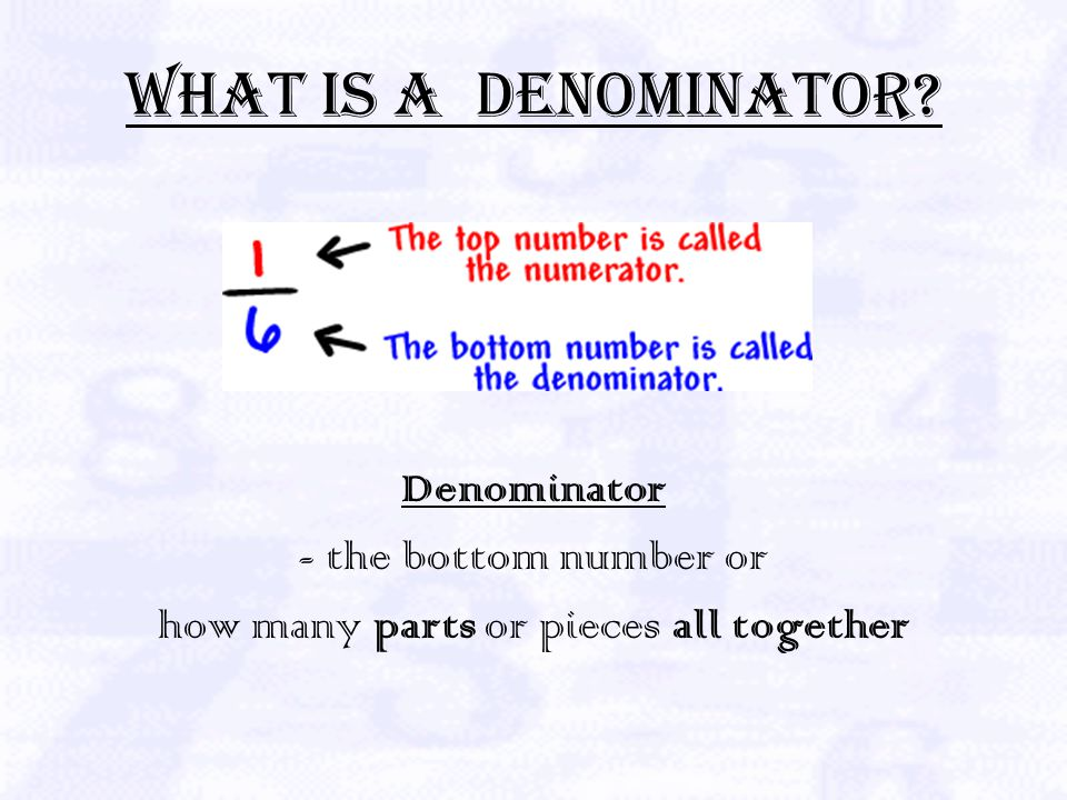 What is a Numerator Numerator- XXXXX http://www.sosmath.com/algebra/fraction/frac3/frac3.html