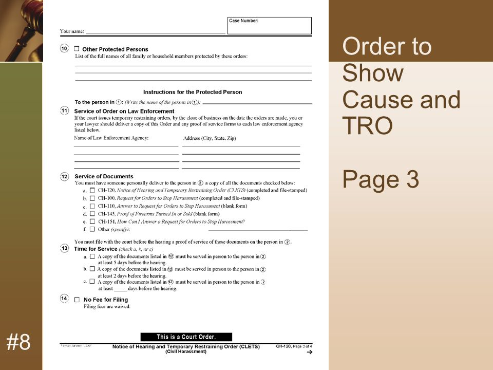 #8 Order to Show Cause and TRO Page 3