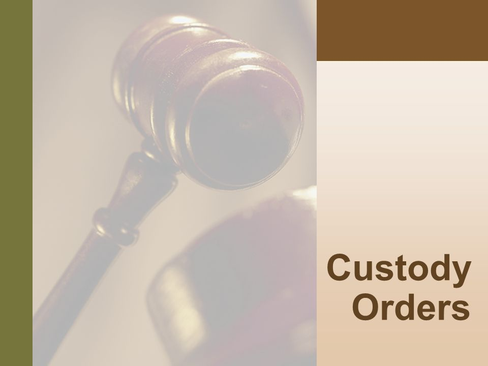 #8 Custody Orders