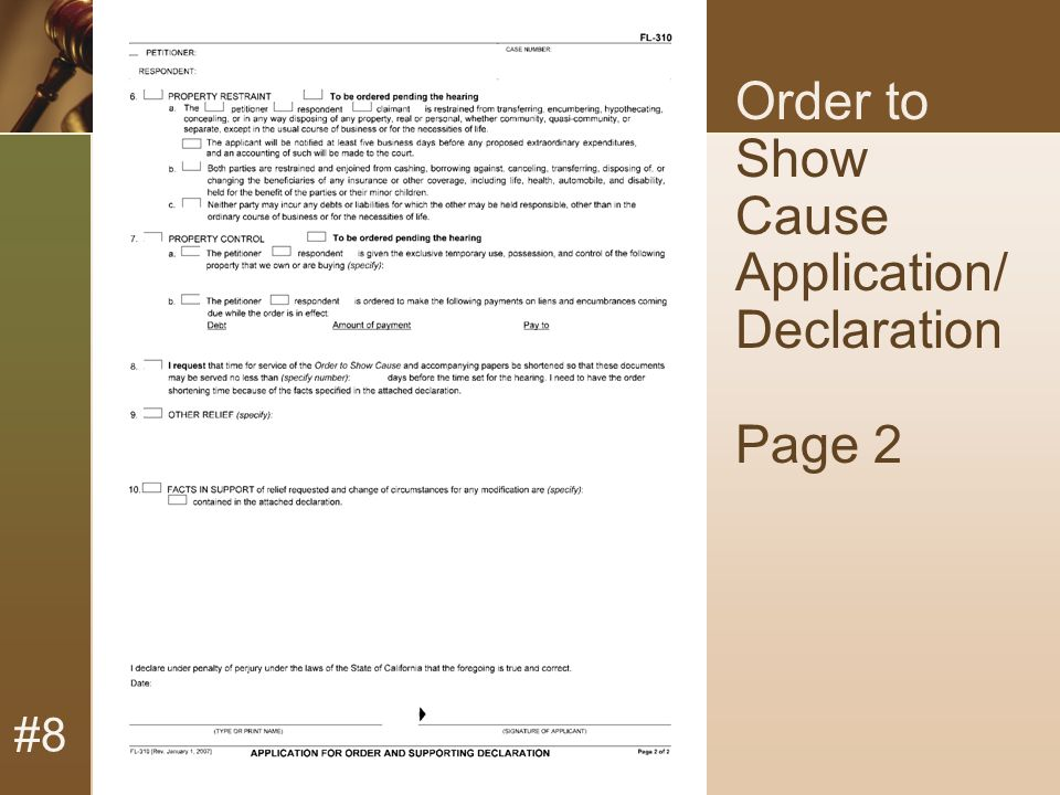 #8 Order to Show Cause Application/ Declaration Page 2