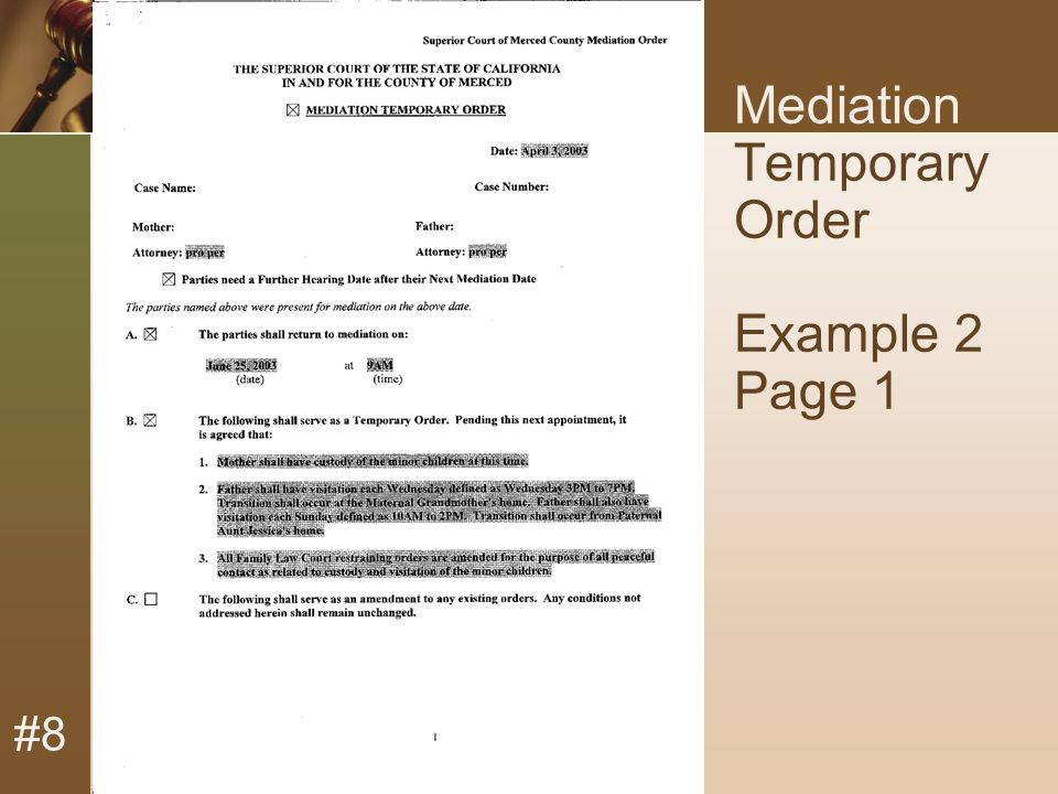 #8 Mediation Temporary Order Example 2 Page 1