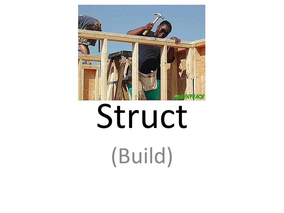 Struct (Build)