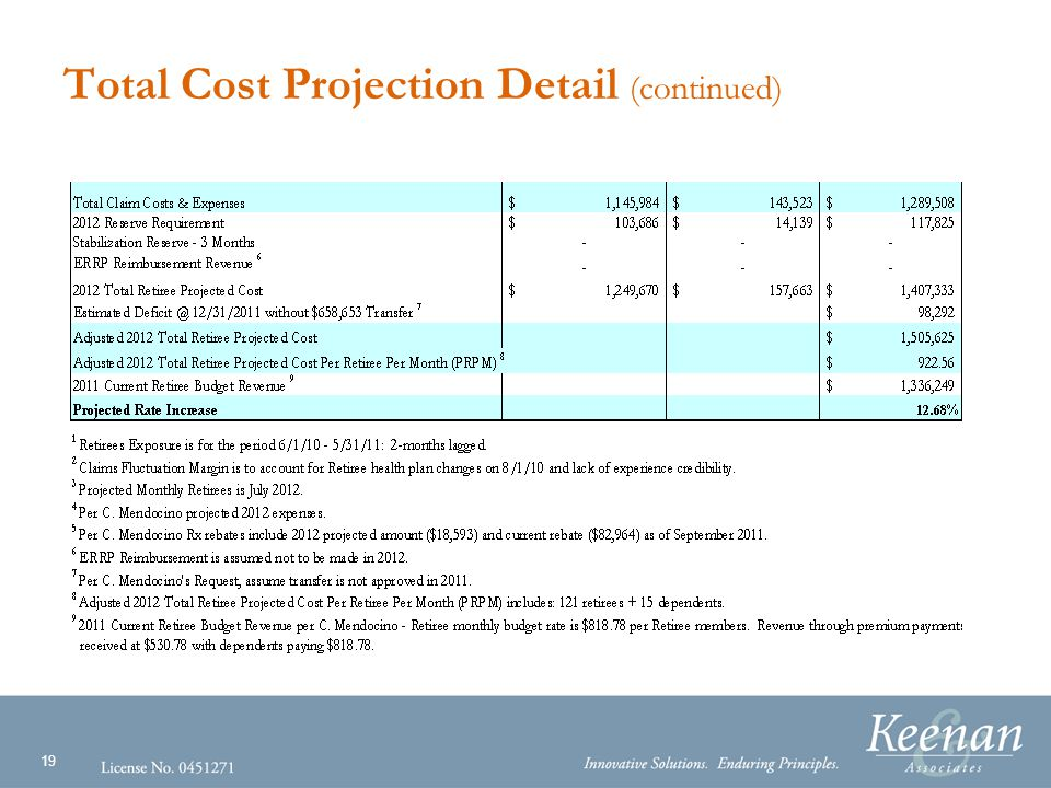 19 Total Cost Projection Detail (continued)