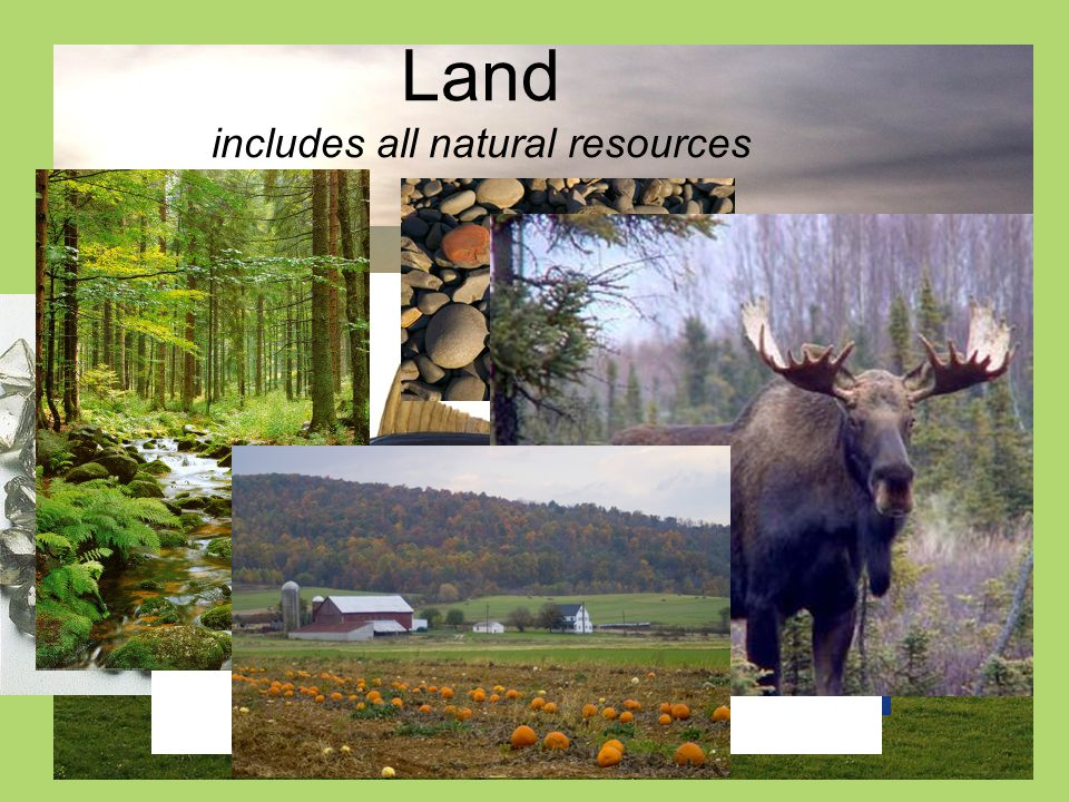 Land includes all natural resources