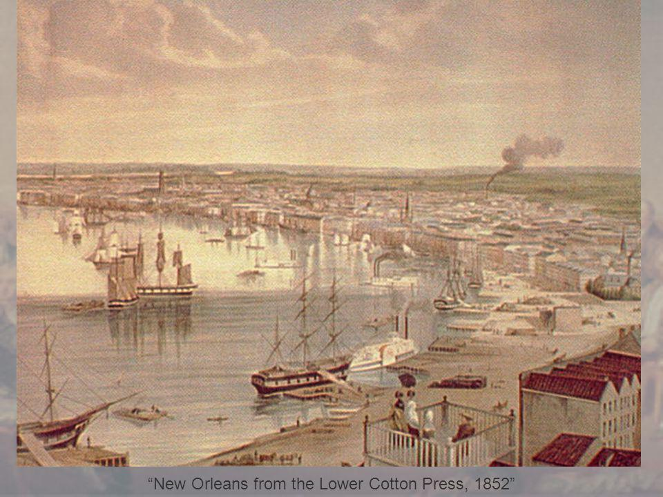 New Orleans from the Lower Cotton Press, 1852