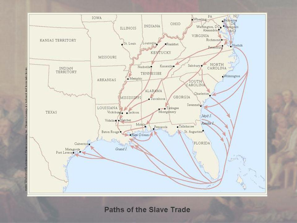 Paths of the Slave Trade ©2004 Wadsworth, a division of Thomson Learning, Inc.