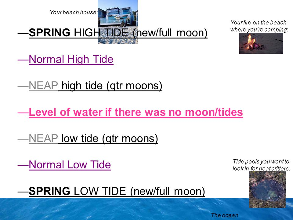 —SPRING HIGH TIDE (new/full moon) —Normal High Tide —NEAP high tide (qtr moons) —Level of water if there was no moon/tides —NEAP low tide (qtr moons)