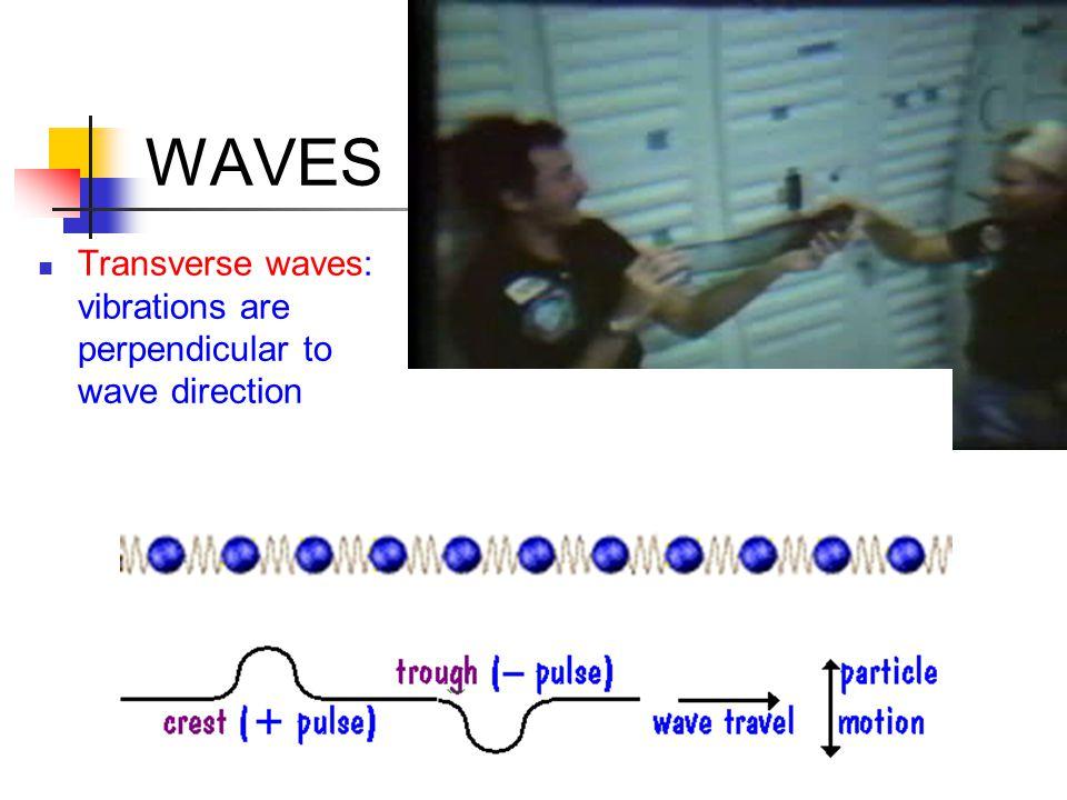 WAVES Longitudinal waves: vibrations parallel to wave direction rarefaction