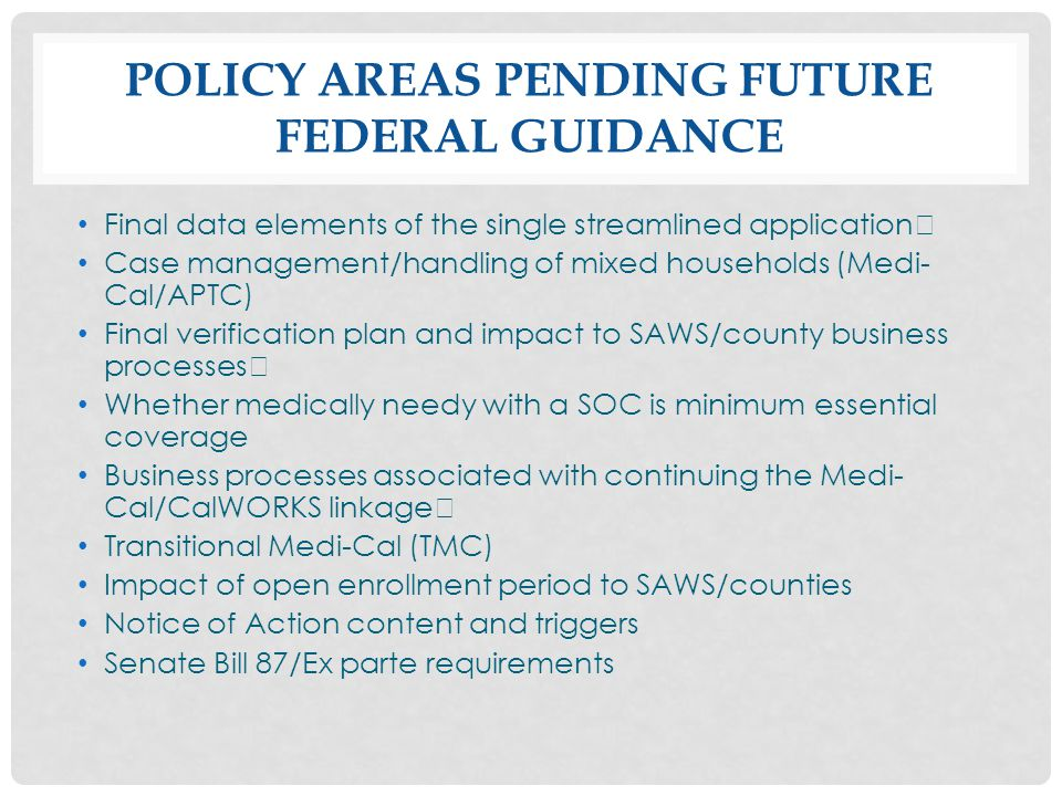 POLICY AREAS PENDING FUTURE FEDERAL GUIDANCE Final data elements of the single streamlined application Case management/handling of mixed households (M
