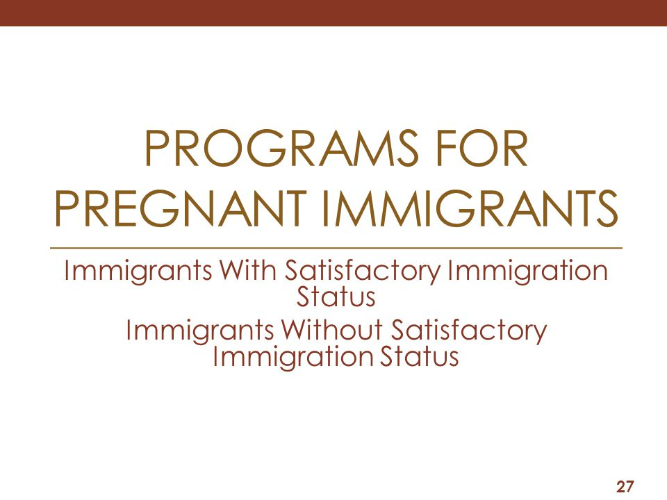 PROGRAMS FOR PREGNANT IMMIGRANTS Immigrants With Satisfactory Immigration Status Immigrants Without Satisfactory Immigration Status 27