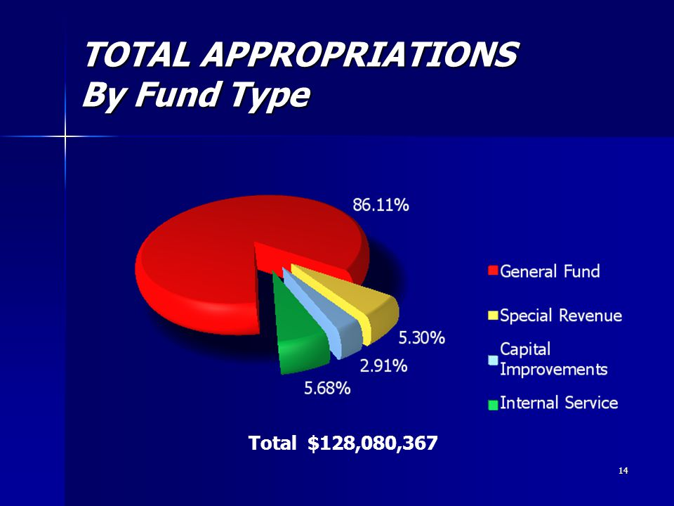14 TOTAL APPROPRIATIONS By Fund Type Total $128,080,367