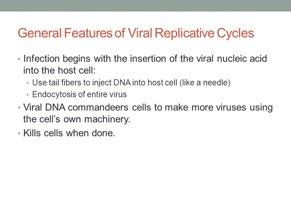 General Features of Viral Replicative Cycles Infection begins with the insertion of the viral nucleic acid into the host cell: Use tail fibers to inject DNA into host cell (like a needle) Endocytosis of entire virus Viral DNA commandeers cells to make more viruses using the cell's own machinery.