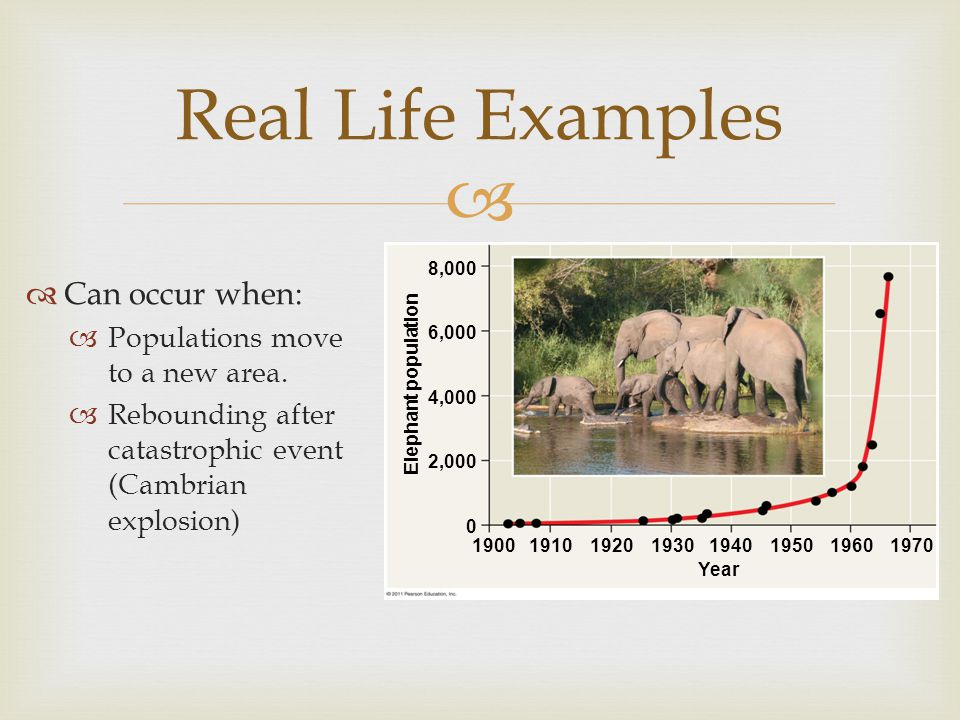   Can occur when:  Populations move to a new area.  Rebounding after catastrophic event (Cambrian explosion) Real Life Examples Year Elephant popu