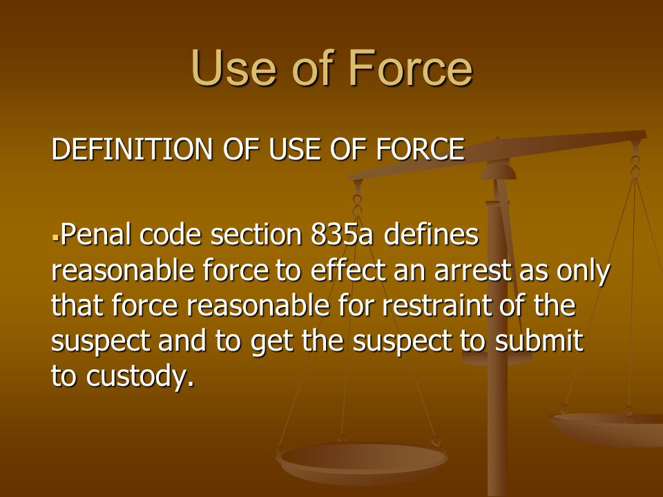 Use of Force DISCUSSION  The Fourth Amendment  The U.S.