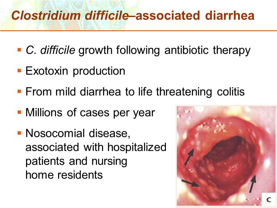 Copyright © 2006 Pearson Education, Inc., publishing as Benjamin Cummings Clostridium difficile–associated diarrhea  C. difficile growth following an