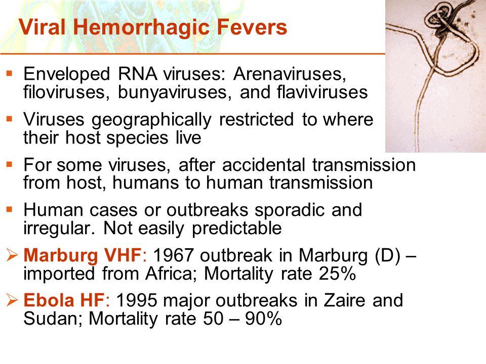 Copyright © 2006 Pearson Education, Inc., publishing as Benjamin Cummings Viral Hemorrhagic Fevers  Enveloped RNA viruses: Arenaviruses, filoviruses,