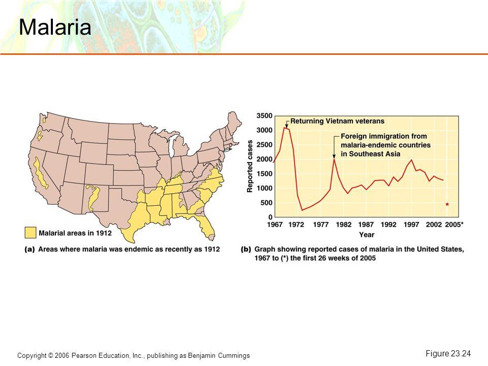 Copyright © 2006 Pearson Education, Inc., publishing as Benjamin Cummings Malaria Figure 23.24