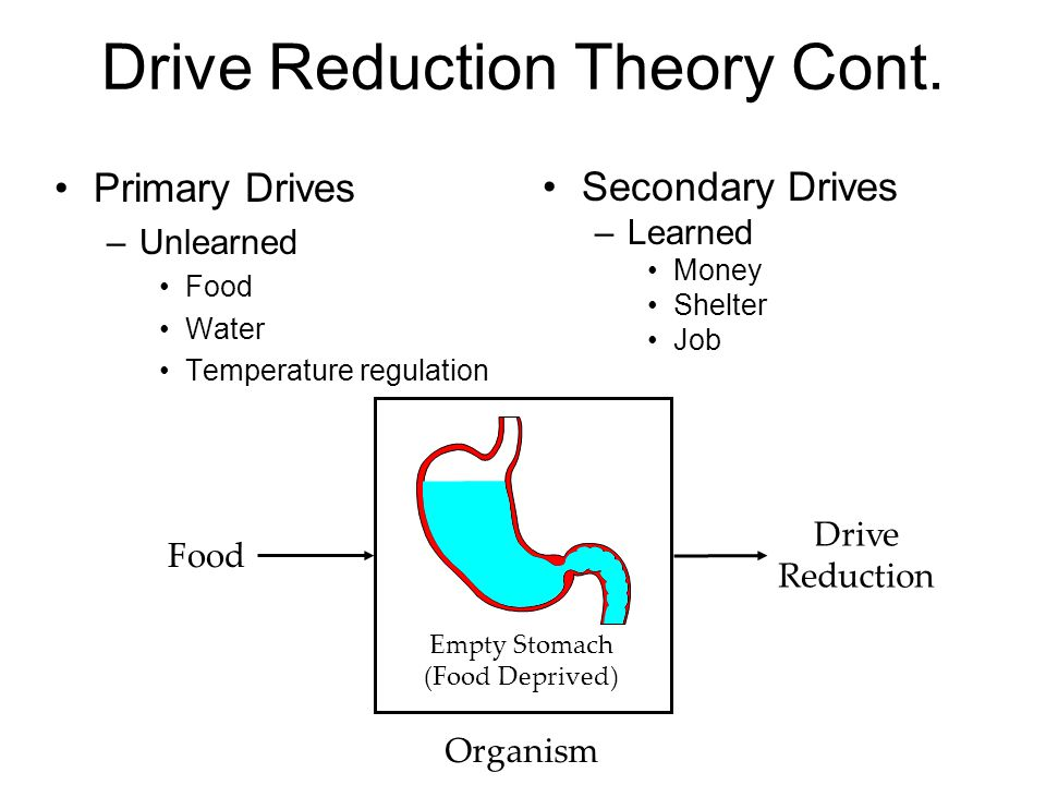 Drive Reduction Theory Cont. Primary Drives –Unlearned Food Water Temperature regulation Food Drive Reduction Organism Stomach Full Empty Stomach (Foo