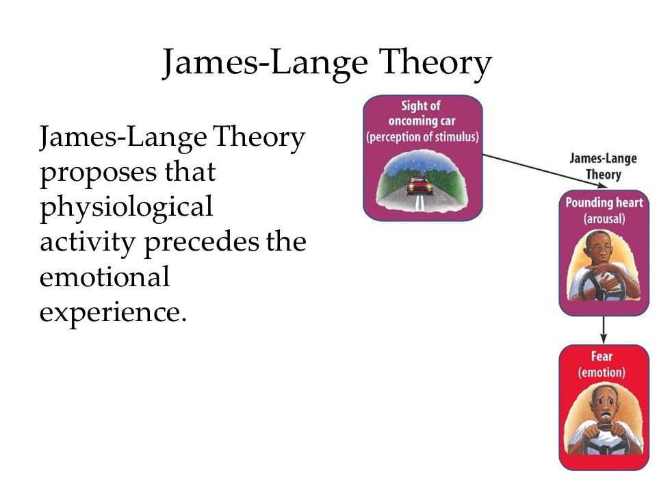 James-Lange Theory James-Lange Theory proposes that physiological activity precedes the emotional experience.