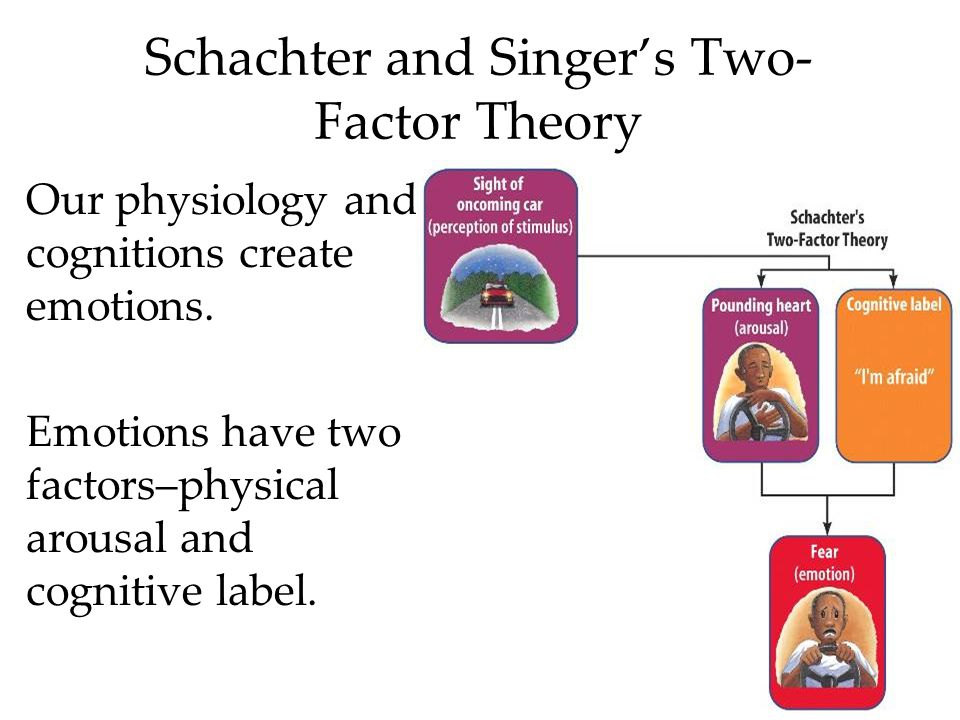 Schachter and Singer's Two- Factor Theory Our physiology and cognitions create emotions. Emotions have two factors–physical arousal and cognitive labe