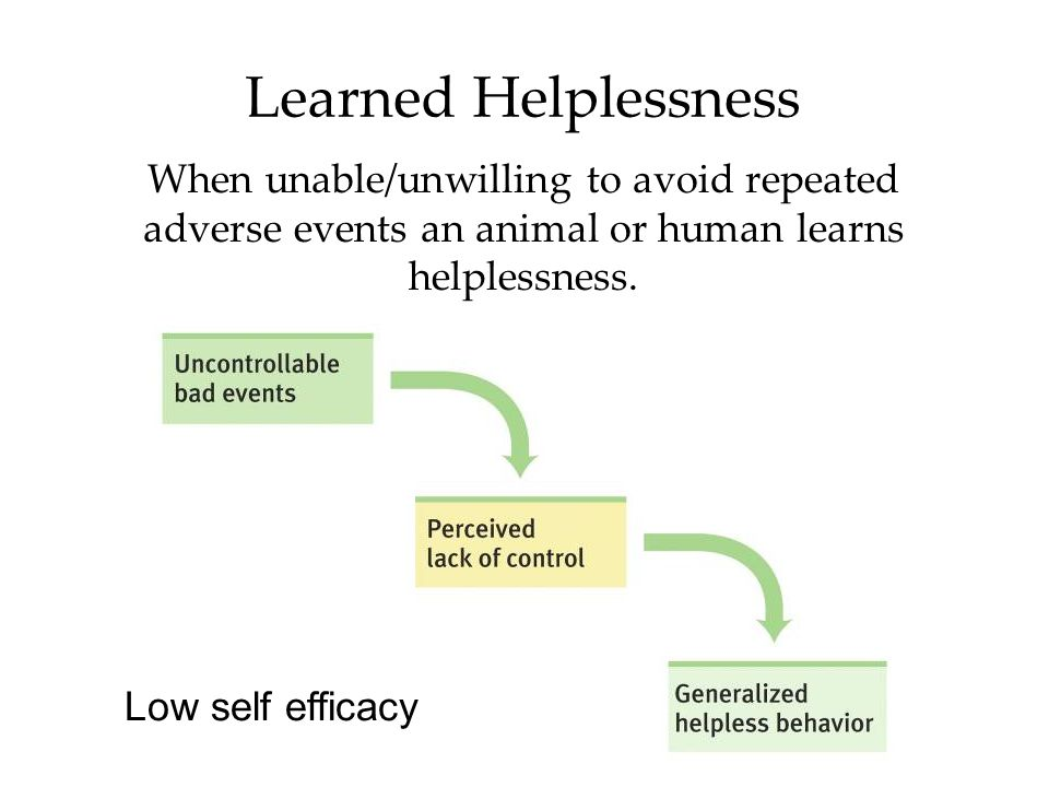 Learned Helplessness When unable/unwilling to avoid repeated adverse events an animal or human learns helplessness. Low self efficacy