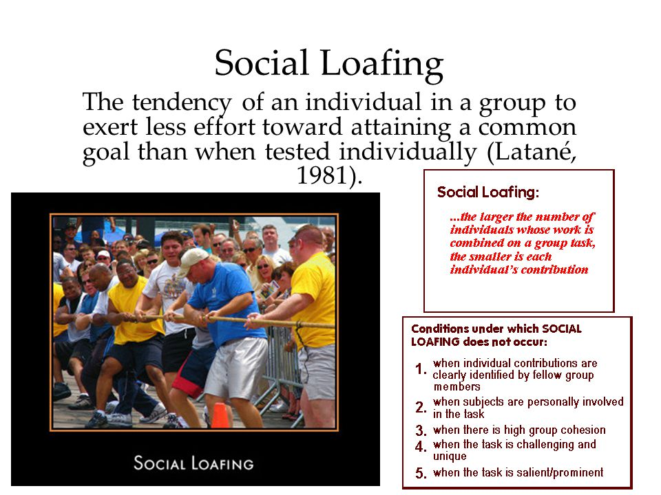 Social Loafing The tendency of an individual in a group to exert less effort toward attaining a common goal than when tested individually (Latané, 198