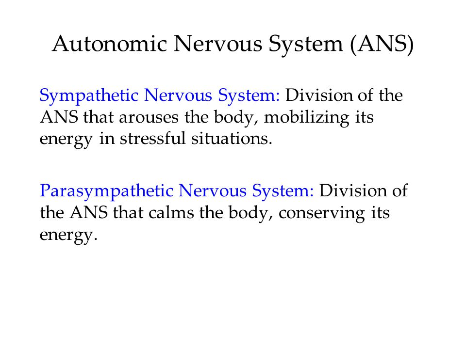 Autonomic Nervous System (ANS) Sympathetic Nervous System: Division of the ANS that arouses the body, mobilizing its energy in stressful situations. P