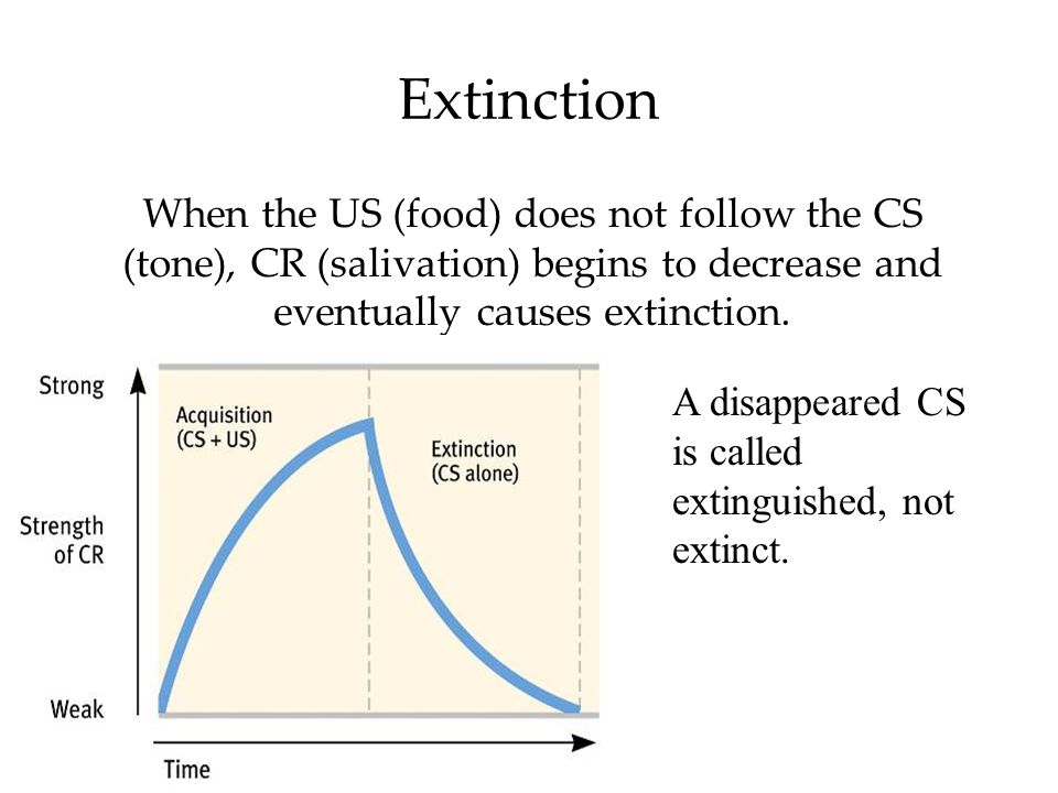 Extinction When the US (food) does not follow the CS (tone), CR (salivation) begins to decrease and eventually causes extinction. A disappeared CS is