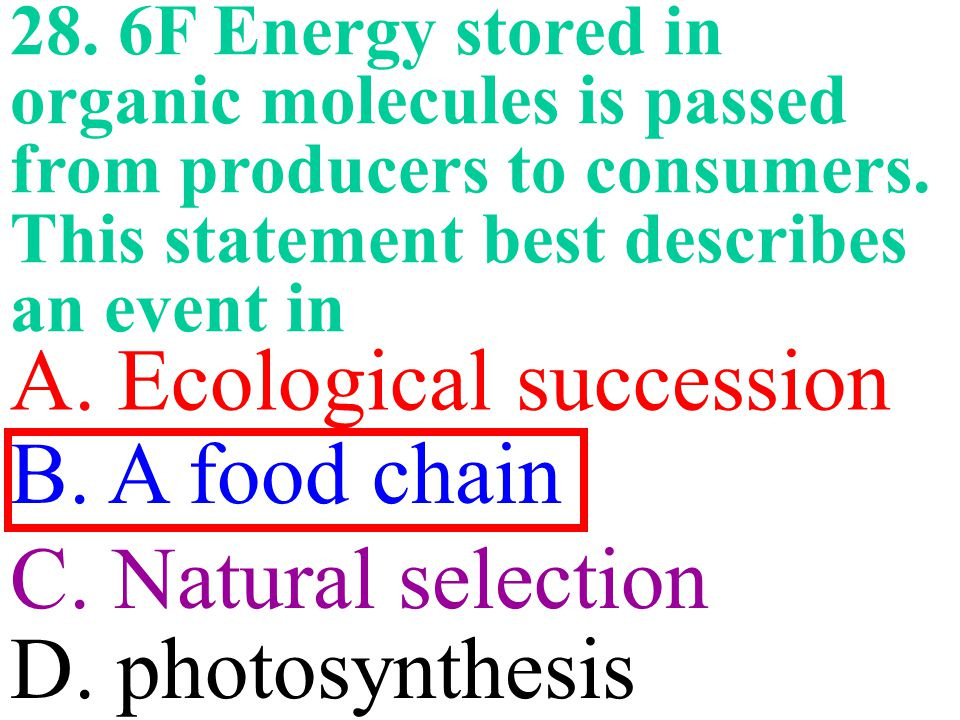 28.6F Energy stored in organic molecules is passed from producers to consumers.