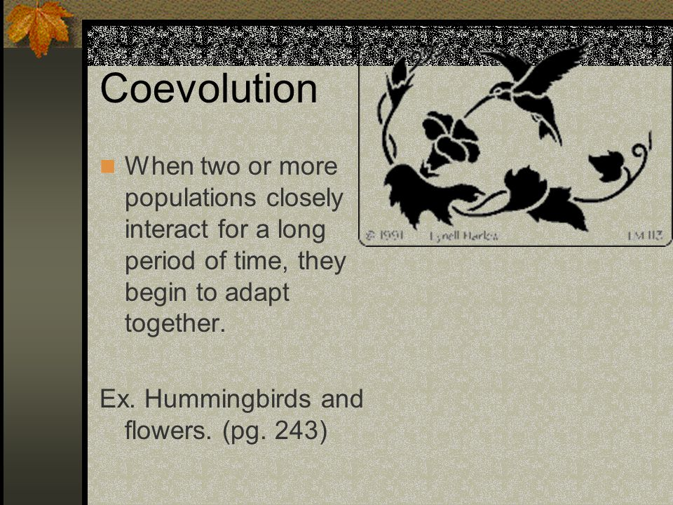 Coevolution When two or more populations closely interact for a long period of time, they begin to adapt together. Ex. Hummingbirds and flowers. (pg.