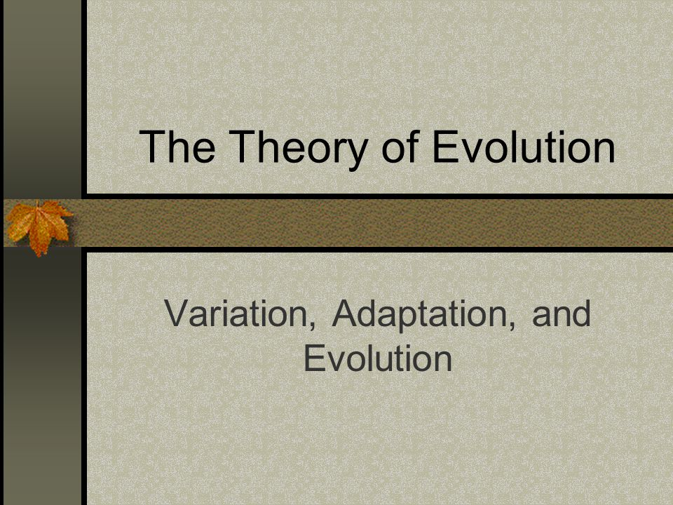 The Theory of Evolution Variation, Adaptation, and Evolution
