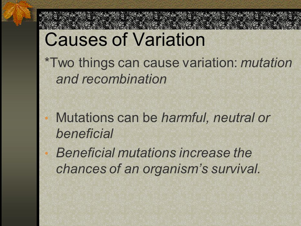 Causes of Variation *Two things can cause variation: mutation and recombination Mutations can be harmful, neutral or beneficial Beneficial mutations i