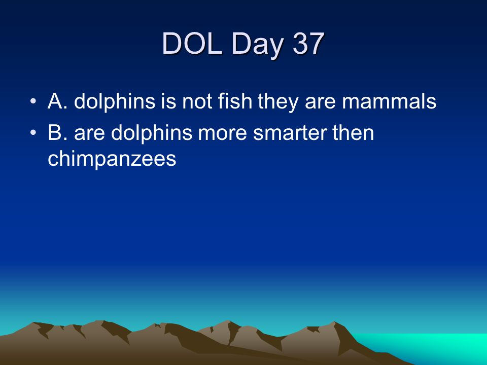 DOL Day 37 A. dolphins is not fish they are mammals B. are dolphins more smarter then chimpanzees