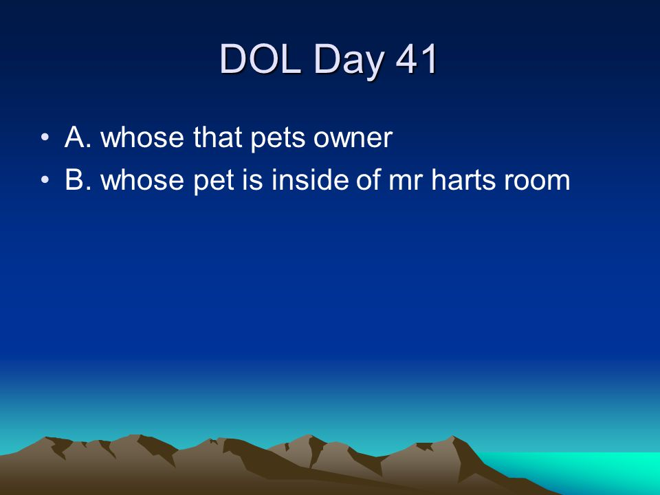 DOL Day 41 A. whose that pets owner B. whose pet is inside of mr harts room