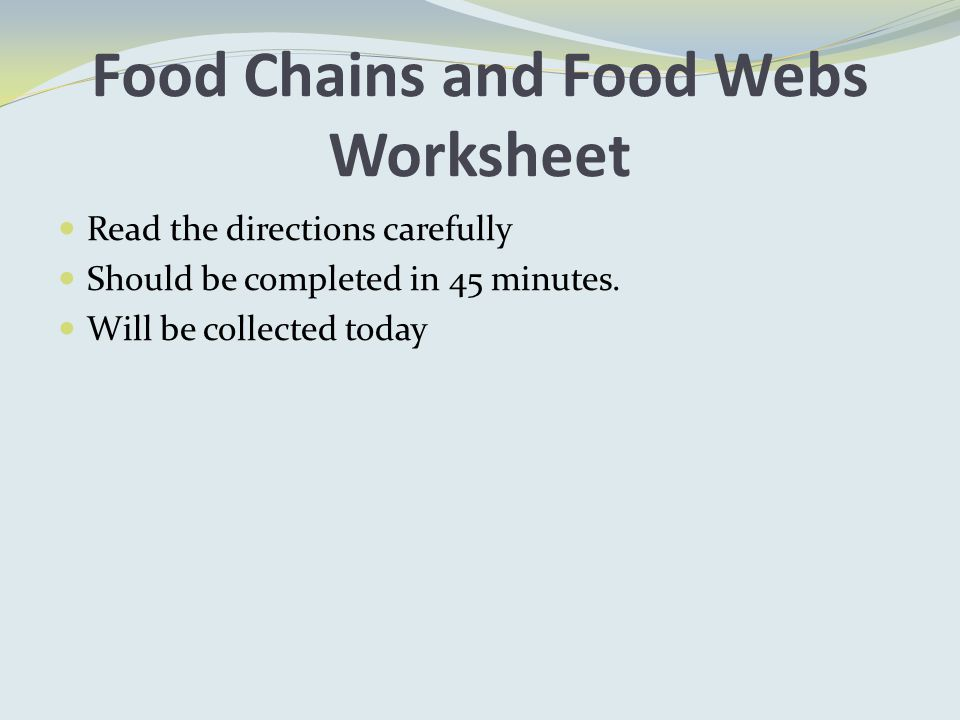Food Chains and Food Webs Worksheet Read the directions carefully Should be completed in 45 minutes.