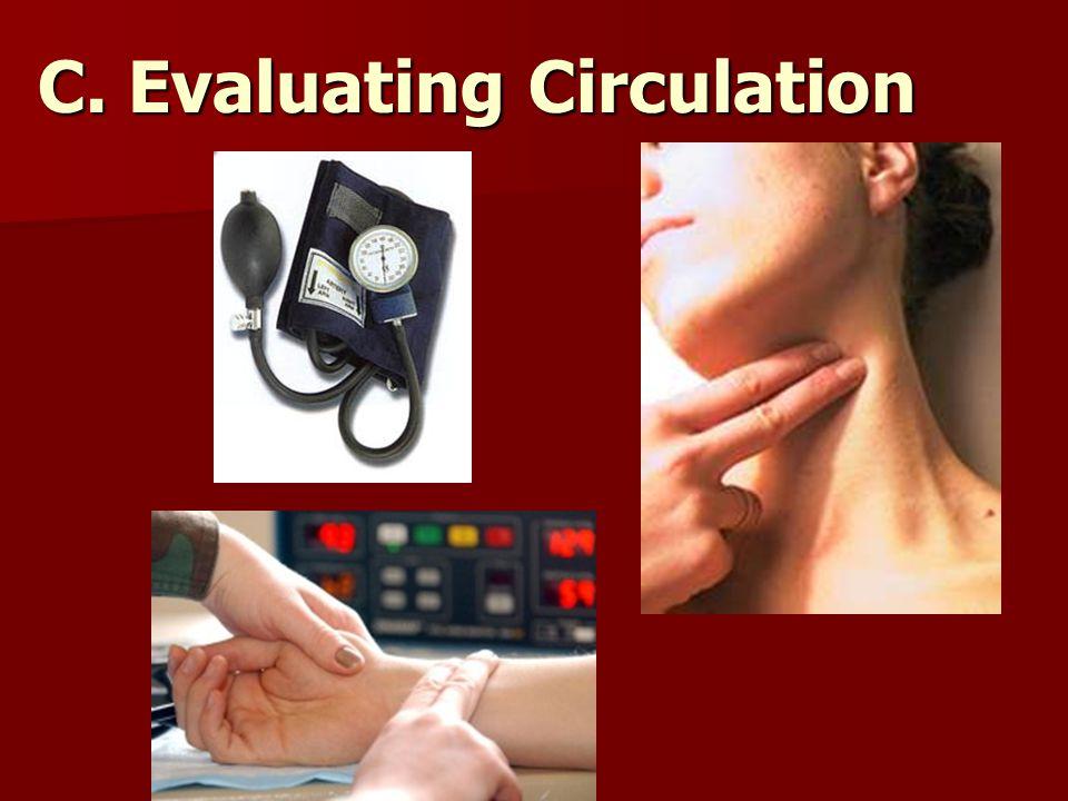 C. Evaluating Circulation