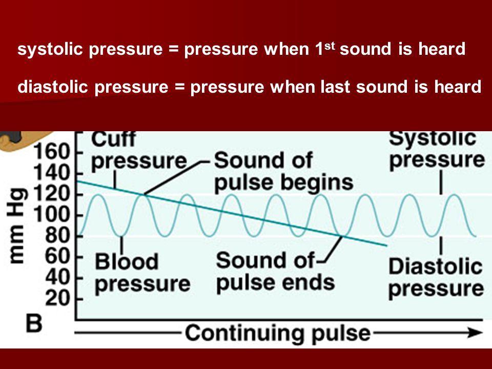 systolic pressure = pressure when 1 st sound is heard diastolic pressure = pressure when last sound is heard