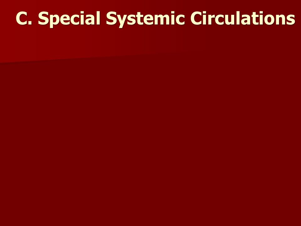 C. Special Systemic Circulations